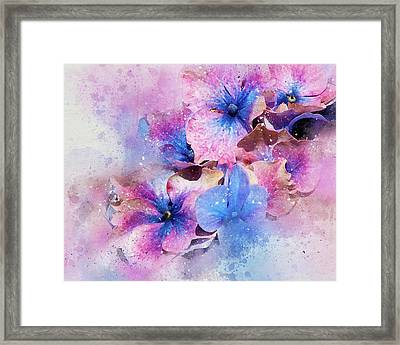 Blue And Purple Flowers Framed Print