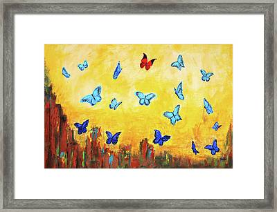 Blue And Red Butterflies Framed Print