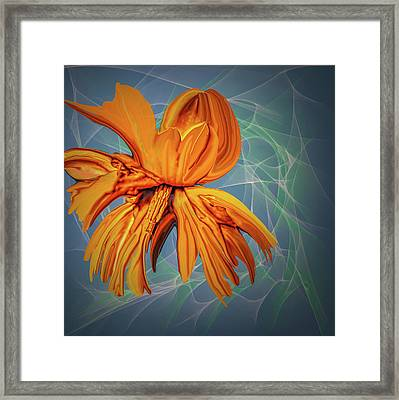 Blue And Yellow #h6 Framed Print