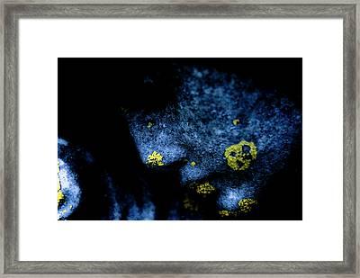 Blue Angel Face Iv Framed Print by Grebo Gray