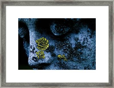 Blue Angel Face V Framed Print by Grebo Gray