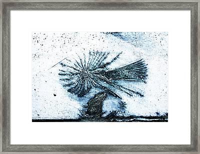 Blue Angel Framed Print