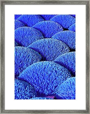 Blue Asia Sound Framed Print