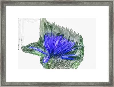 Blue Aster Srtistic Framed Print by Leif Sohlman