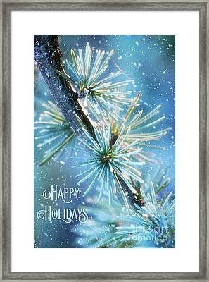 Blue Atlas Cedar Winter Holiday Card Framed Print