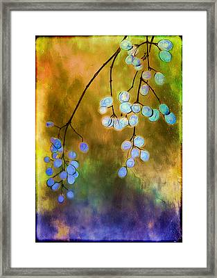 Blue Autumn Berries Framed Print