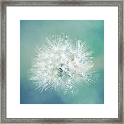 Framed Print featuring the photograph Blue Awakening by Trish Mistric
