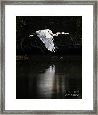 Blue Ballet Framed Print