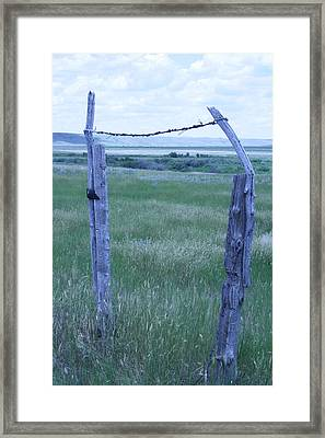 Blue Barbwire Framed Print