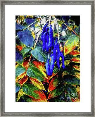 Blue Beans #2 Framed Print by Mona Stut