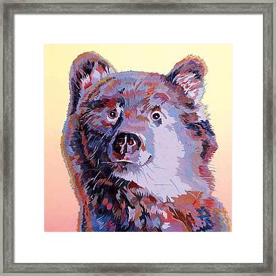 Blue Bear Framed Print by Bob Coonts