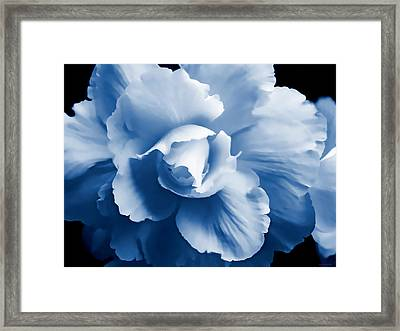 Blue Begonia Floral Framed Print by Jennie Marie Schell