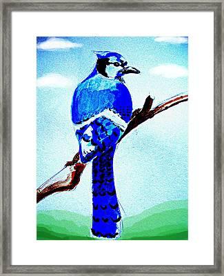 Blue Bird Framed Print by Alfredo Lozano