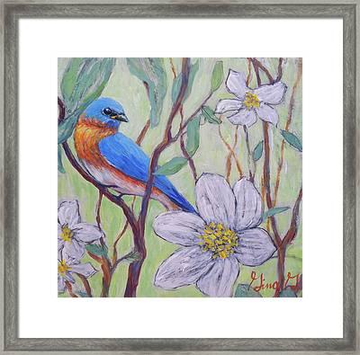 Blue Bird And Blossoms Framed Print