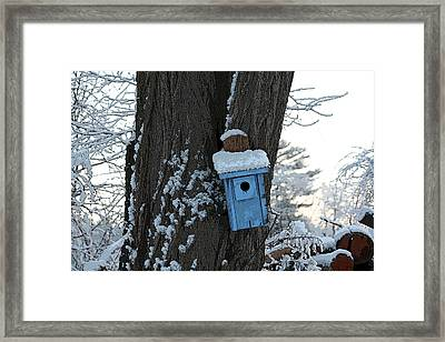 Blue Birdhouse Framed Print