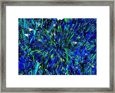 Blue Blades Of Grass Framed Print