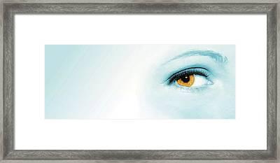 Blue Blush Framed Print