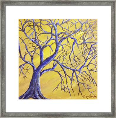 Branches Of Blue Framed Print by T Fry-Green