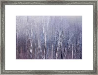 Blue Brush Framed Print