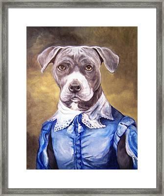 Blue Bully Boy Framed Print