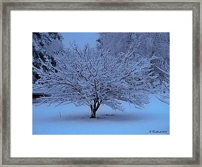 Blue Christmas Framed Print by Betty Northcutt