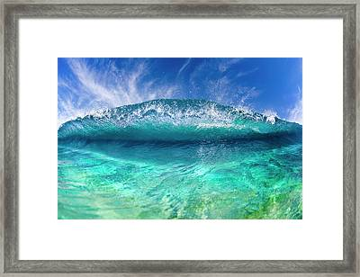 Blue Clam Framed Print by Sean Davey