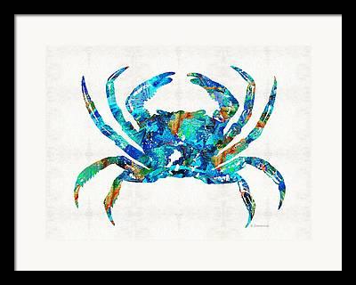 Sarasota Beaches Framed Prints
