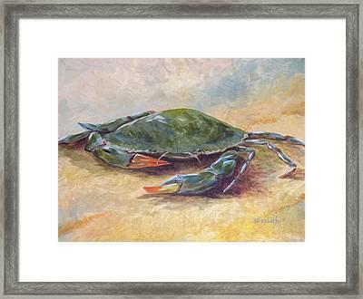Blue Crab At Rest Framed Print by Beth Maddox