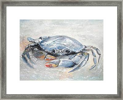 Blue Crab Framed Print by Sibby S