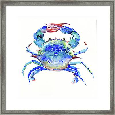 Blue Crab Framed Print by Suren Nersisyan