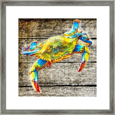 Blue Crabs Framed Print