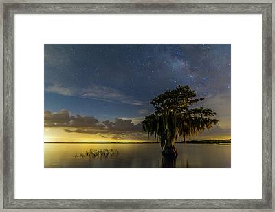 Blue Cypress Lake Nightsky Framed Print