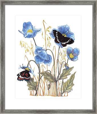 Blue-day Butterfly Framed Print