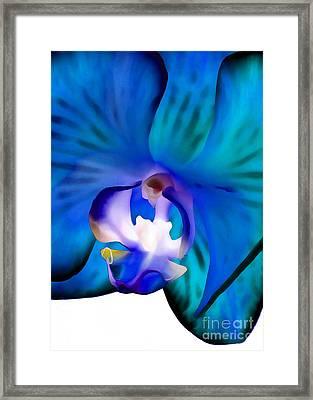 Blue Daydream Framed Print by Krissy Katsimbras