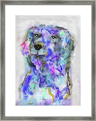 Blue Dog Framed Print by Claudia Schoen