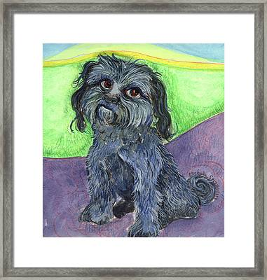 Blue Dog Framed Print