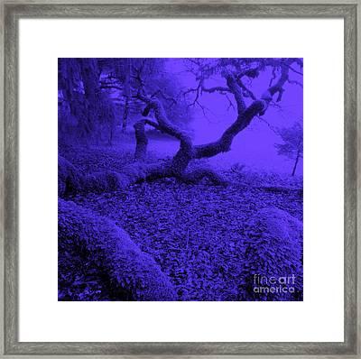 Blue Dreaming Moon Framed Print by JoAnn SkyWatcher