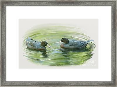 Blue Ducks  Framed Print