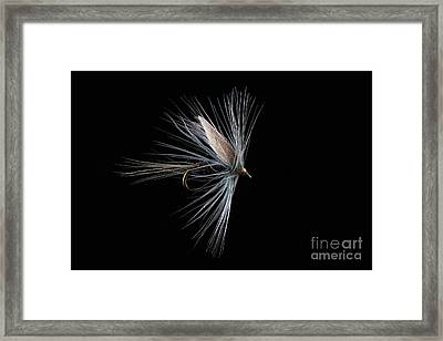 Blue Dun Framed Print by John Edwards