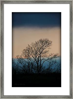 Framed Print featuring the photograph Blue Dusk by Chris Berry