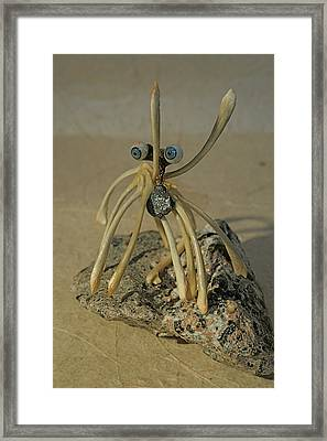 Blue Eye Spider Framed Print by Ruth Edward Anderson
