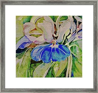 Blue Eyed Mary Framed Print