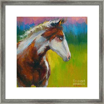 Blue-eyed Paint Horse Oil Painting Print Framed Print by Svetlana Novikova