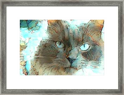 Blue Eyed Persian Cat Watercolor Framed Print
