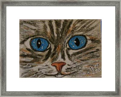 Framed Print featuring the painting Blue Eyed Tiger Cat by Kathy Marrs Chandler
