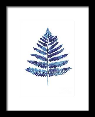 Ferns Framed Prints