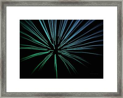 Blue Firework Framed Print by Chris Berry