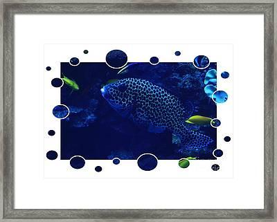 Blue Fish Framed Print by Carol Groenen