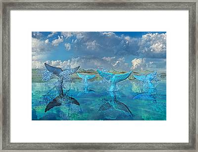 Blue Flags Framed Print