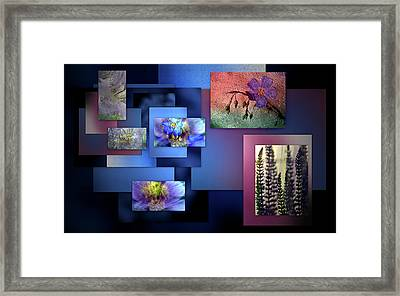 Blue Flower Collage Framed Print by Irma BACKELANT GALLERIES